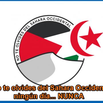 #MundoSaharaui: Lista de Páginas Facebook del movimiento solidario con la causa saharaui