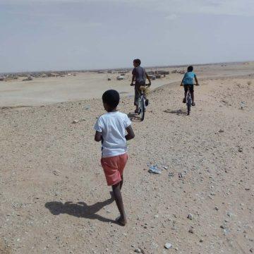 Eurodéputée : Mes trois jours au Sahara Occidental occupé – Comité belge de soutien au peuple sahraoui