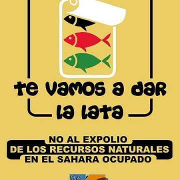 Nota de prensa: CEAS-Sahara exige el respeto de la legalidad internacional en relación a los recursos naturales del Sahara Occidental – CEAS-Sahara