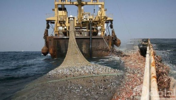 """EU-Morocco Fisheries Agreement: """"It's not evident that European Parliament will approve new agreement"""" 