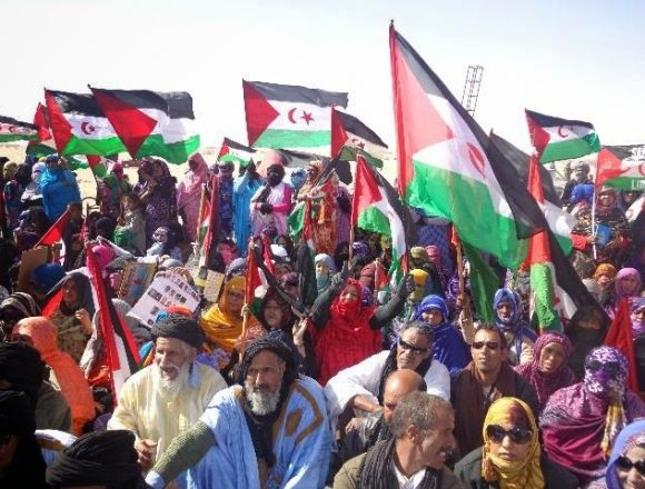Democratic solution to Western Sahara conflict is guarantee of peace, security and stability in region | Sahara Press Service