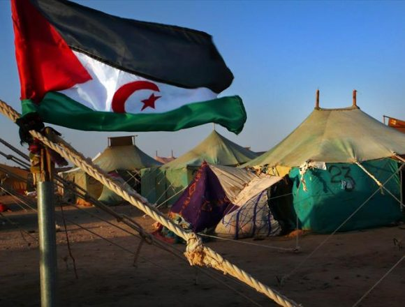 Los campamentos de refugiados saharauis- El Periódico de Aragón