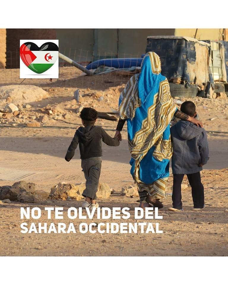 ⚡️ 🇪🇭 La #ActualidadSaharaui HOY, 5 de enero de 2019 🇪🇭