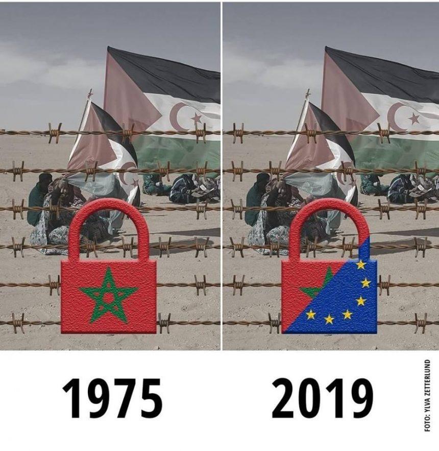 ⚡️ 🇪🇭 Las noticias saharauis del 23 de enero de 2019: La #ActualidadSaharaui de HOY 🇪🇭🇪🇭