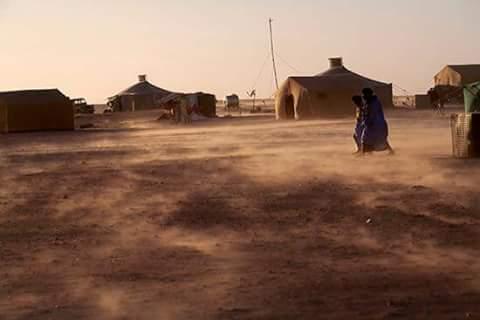 El Confidencial Saharaui: 43 años de una huida, la verdad sobre la invasión militar del Sáhara Occidental.