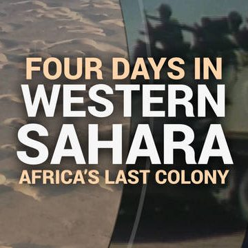 Cuatro días en el Sahara Occidental ocupado: una mirada exclusiva desde la última colonia en África | Democracy Now!