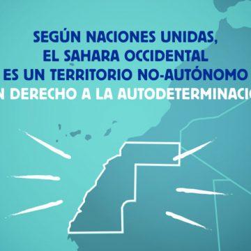 Acuerdos UE-Marruecos: derecho de autodeterminación ignorado – Observatori Drets Humans i Empreses