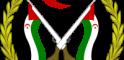 El Frente POLISARIO llama la atención de la ONU sobre el grave incidente del joven saharaui Ahmed Salem | Sahara Press Service