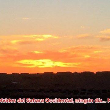 Más noticias saharauis del 15 de abril de 2019 🇪🇭🇪🇭