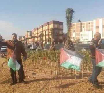 Ali Saadouni, la tenacidad de la lucha saharaui | Contramutis