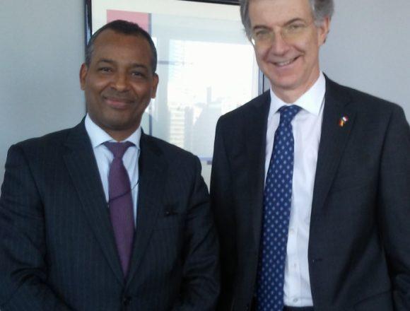El representante del Frente POLISARIO ante la ONU se reúne con el Presidente del Consejo de Seguridad   Sahara Press Service