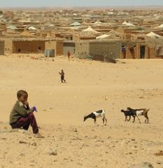 Sahara Occidental. Historia de un abandono – El Faradio
