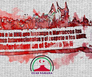 CEAS-Sahara: Carta abierta a Pedro Sánchez tras los resultados de las Elecciones del 28 de abril, pidiéndole un compromiso mayor con la Descolonización del Sahara Occidental