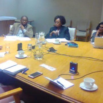 «Africa Solidarity for Saharaui» se reúne con la Comisión de Derechos Humanos de Sudáfrica | POR UN SAHARA LIBRE .org
