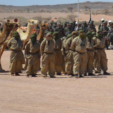 Lutte armée sahraouie : une célébration sur fond d'attachement à l'autodétermination   Sahara Press Service