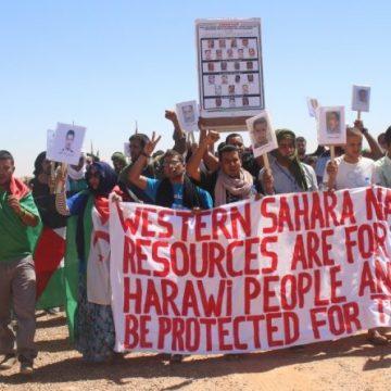 El Frente Polisario El último movimiento de liberación nacional – Diario el Minuto