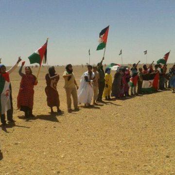 Las Naciones Unidas en el Sáhara Occidental: ¿Paz sin honor? — elminuto-cl