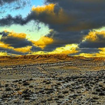 Questions sur un forum au Sahara occidental – Le Temps