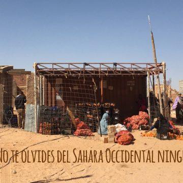 La Actualidad Saharaui de HOY, 11 de agosto de 2019 🇪🇭