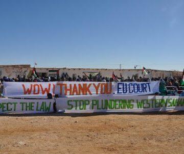 ONG pide a la ONU que condene a Marruecos por saquear recursos del Sáhara Occidental | DIARIO LA REALIDAD SAHARAUI
