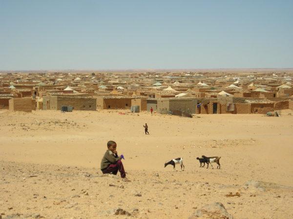 Día Mundial del Refugiado | Los saharauis también somos refugiados