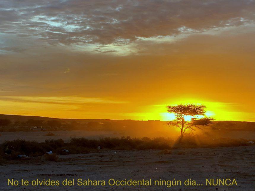 La Actualidad Saharaui: 6 de junio de 2020 🇪🇭