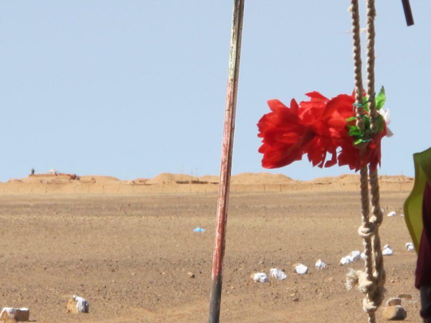 La Actualidad Saharaui: 2 de junio de 2020 🇪🇭