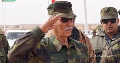 Punto Rojo: Sahara: El Frente Polisario, entre la diplomacia y la vuelta a las armas